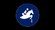 Najbardziej popularna i najprostsza w odbiorze dyscyplina jeździecka zakończy zmagania na olimpijskim hipodromie w Tokio. W rywalizacji w skokach przez przeszkody, niestety, nie zobaczymy Polaków.