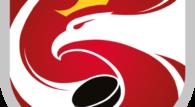 2. kolejkę Polskiej Hokej Ligi będziemy wspominać przede wszystkim przez pryzmat meczu w Sosnowcu, gdzie miejscowe Zagłębie stworzyło fantastyczne widowisko z GKS-em Tychy. Wygrali goście, ale hokeiści z Sosnowca pokazali, że w tym sezonie mogą sprawić niejedną niespodziankę. Mecz w […]